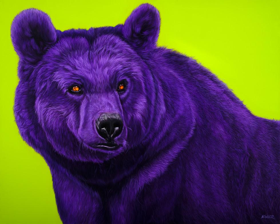 BEAR IN PURPLE, 2007