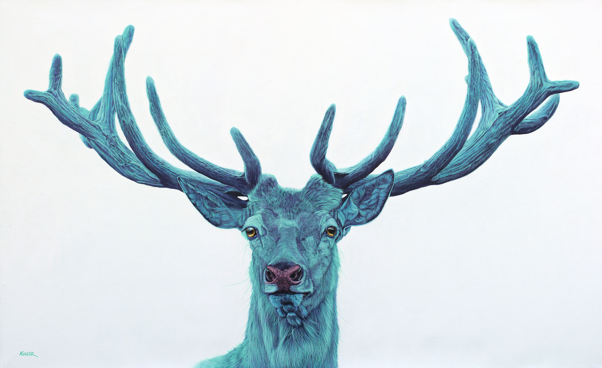 STAG ON WHITE, 2012