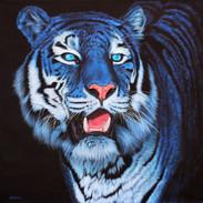 BLUE TIGER ON BLACK