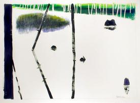 fresh-pond-marsh