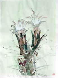 papercactus