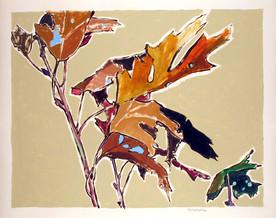 oak-leaves-5