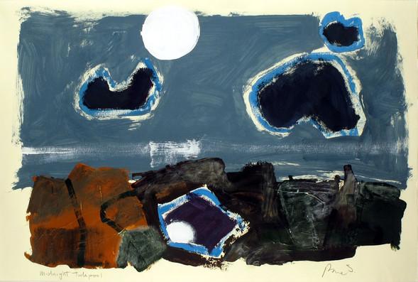 moonlight-tidepool