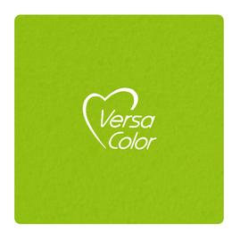Versacolor Small Ink Pad- Lime