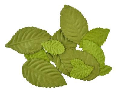 Kasiercraft Paper Leaves