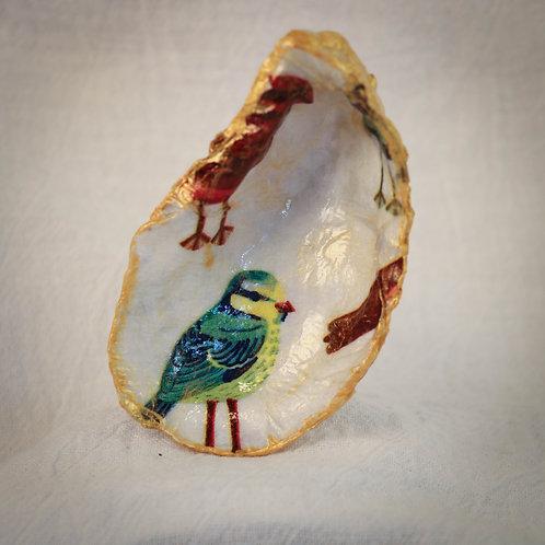 Parakeet Oyster Shell Trinket Dish