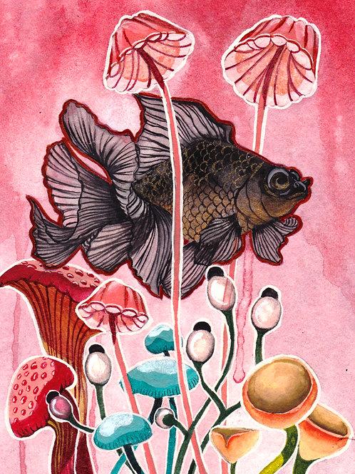 Art Print: Blackfish (choose size)