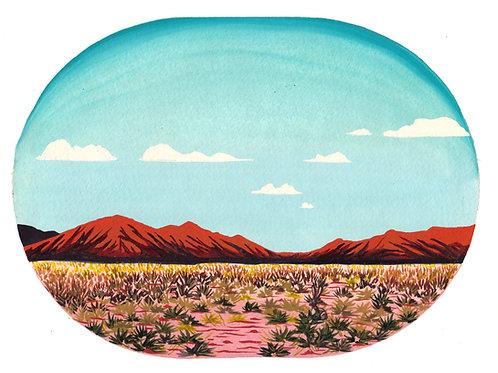 Art Print: Desert Jack (choose size)