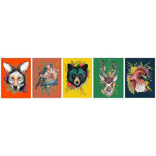 "5x7"" print five-pack Fiesta Animals"
