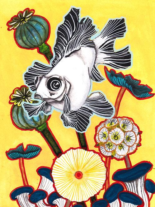 Art Print: Whitefish (choose size)