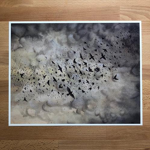 Art Print: Murmuration (choose size)