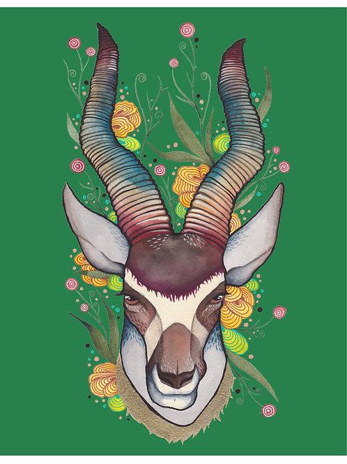 8x10 Art Print: Fiesta Antelope (Green)
