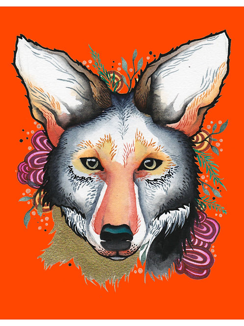 8x10 Art Print: Fiesta Coyote