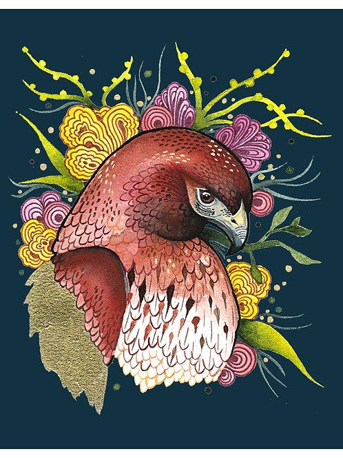 8x10 Art Print: Fiesta Hawk