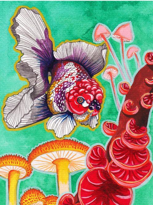 Art Print: Purplefish (choose size)