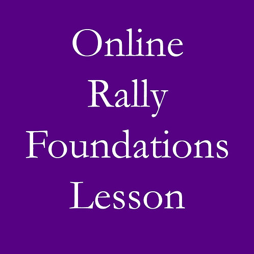 Online Rally Foundations Lesson