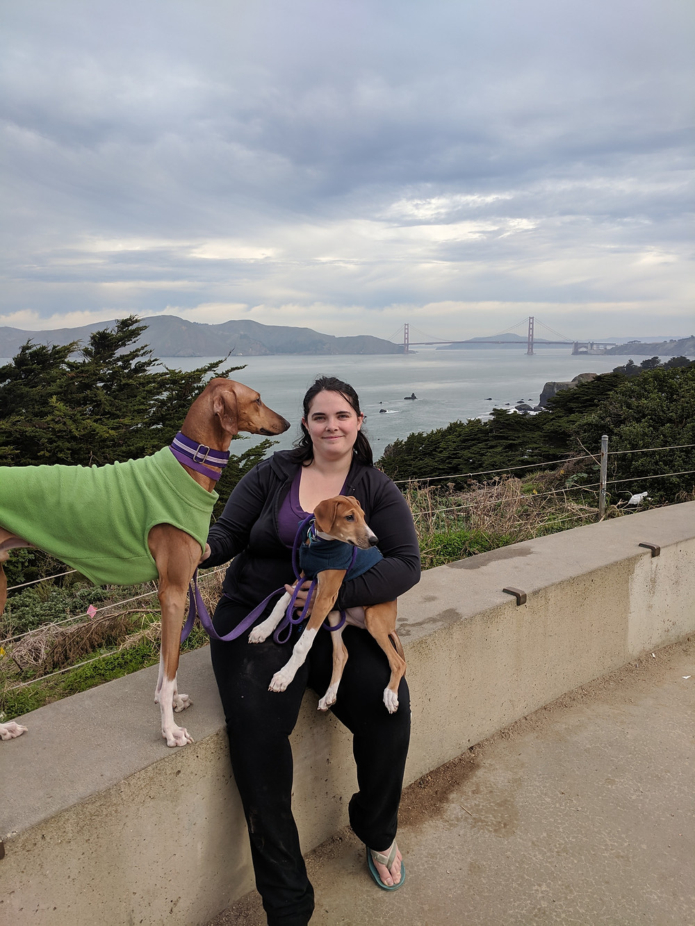 Anubi (15 months) and Amidi (11 weeks) posing in front of the Golden Gate Bridge. Ami did a lot of being carried this trip.