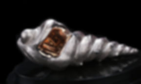 Shell+-+silver.jpg