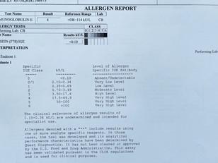 Food Allergy & Sensitivity tests (IgG & IgE): Worth It?