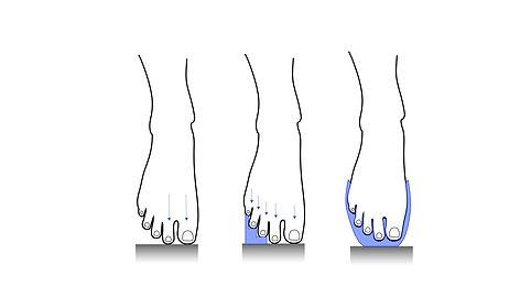 weight distribution.jpg