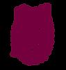 IPN Logo.png