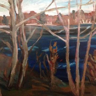 Trees lakeside