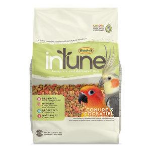 Intune Conure & Cockatiel