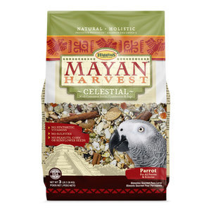 Mayan Harvest Celestial Parrot