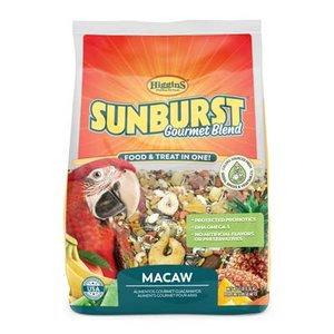 Sunburst Macaw