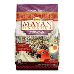 Mayan Harvest Yucatan Conure