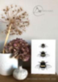 Wholesale catalogue cover.jpg