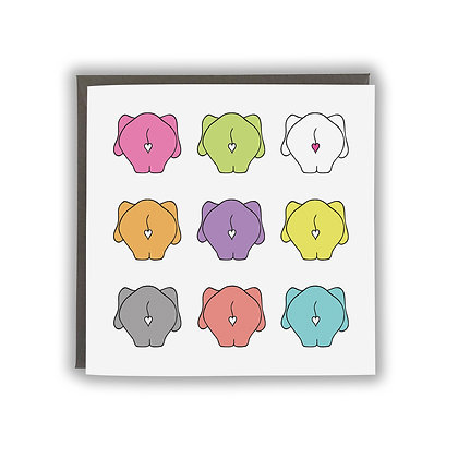Multi Colour Elephant Bums