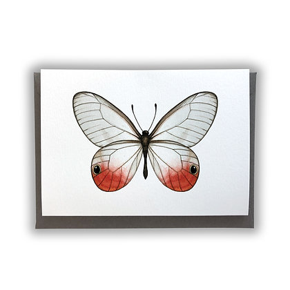 Red Butterfly Card