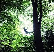 Mamie grimpe d'arbre_edited.jpg