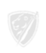 Shield%20PNG_edited.png