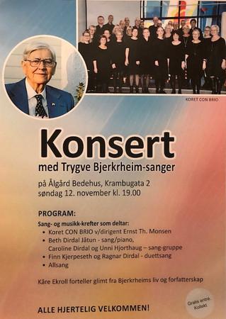 Trygve Bjerkrheim konsert