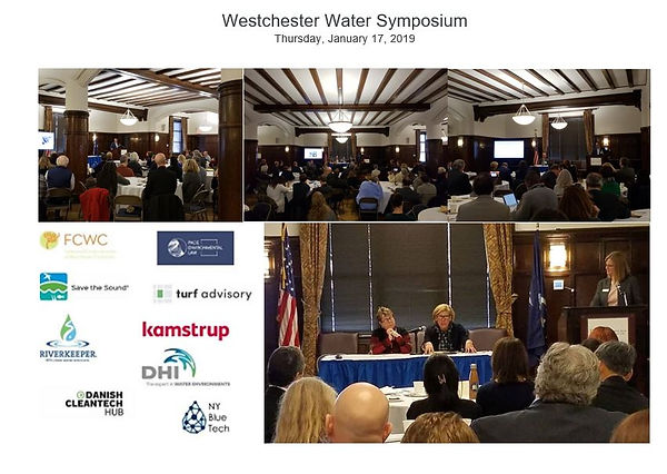 Water Symposium collage 17Jan19.JPG