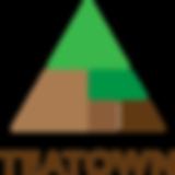 teatown-logo-4color.png