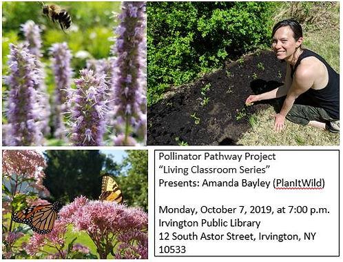 Pollinator Pathways 07Oct19.JPG