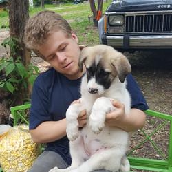 Nate's Puppy