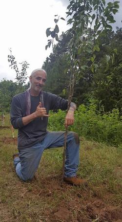 Mark Antum Celebrates his Pear Tree