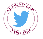 Twitter Large Logo.png