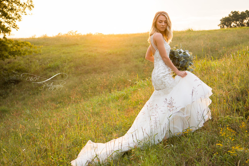 Beautiful Bride In Field