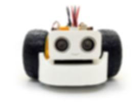 Robô Roobi.jpg