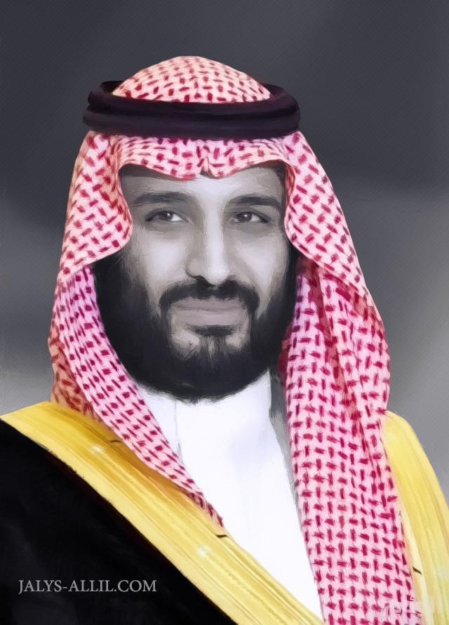 ولي العهد الامير محمد بن سلمان بن عبدالعزيز آل سعود