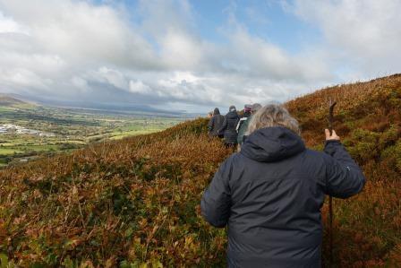 New Permissive Path - leading to the Frenni Fawr Oak Woodland...