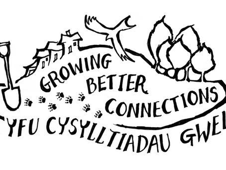 Growing Better Connections Update