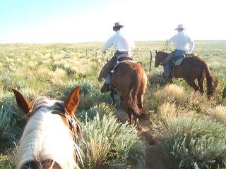 Colorado USA ranch horse cheval médiation équine équithérapie