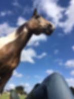 Juliette Masure médiation équine équithérapie cheval détente ciel bleu nuages