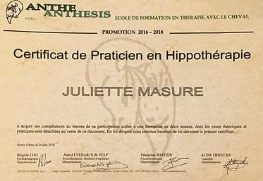 Cerificat de praticie en hippothérapie équithérapie médiation équine
